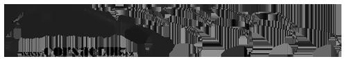 corsa_logo